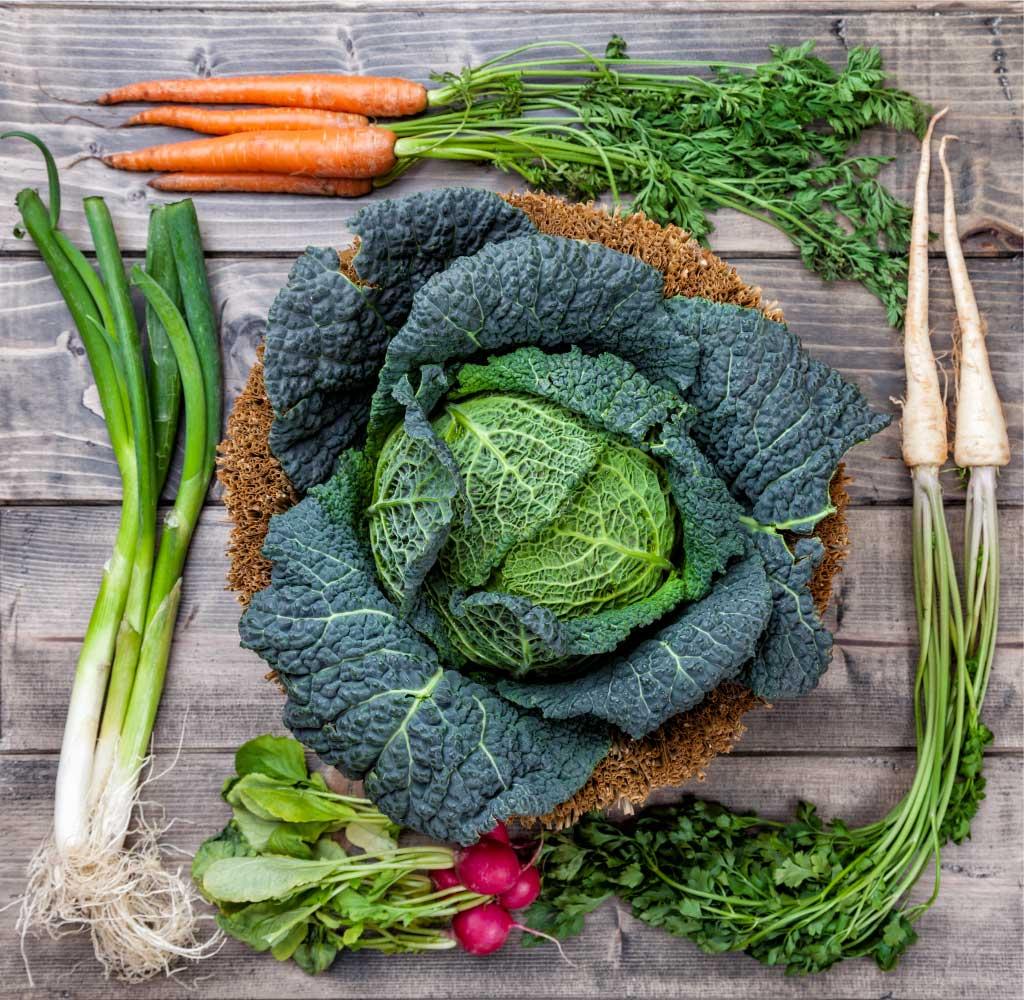 cavolo verza e carote su tavolo di legno